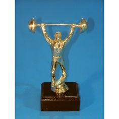 Great quality weightlifter figurine on a wood base. Perfect giveaway trophy for all competitors in your competition. Trophies And Medals, Some Ideas, Clearance Sale, Weight Lifting, Giveaway, Competition, Table Lamp, Base, Wood