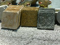 Stepping stones (Dragon Fly, Bee, Butterfly) Southwest and Tropical
