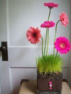 gerbera daisies are my favorite! I must make this!