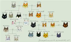 Image result for Warrior Cats Family Tree