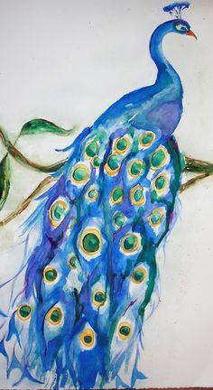 peacock painting   Tumblr