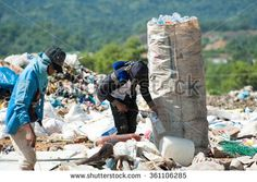 Kota Kinabalu Sabah Malaysia-Jun 7, 2013:Scavengers collecting plastic bottle in dumping site at Kayu Madang Sabah.Rubbish segregation is hardly impose in Malaysia beside many campaign by government.