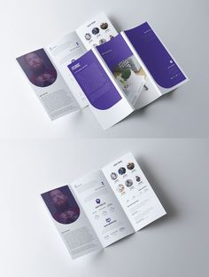 Sample Tri-fold Brochure on Behance Pamphlet Design, Leaflet Design, Booklet Design, Graphic Design Brochure, Graphic Design Print, Creative Brochure Design, Catalogue Design Templates, Catalog Design, 3 Fold Brochure