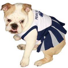 $19.99-$19.99 Penn State Cheerleader Dog MD