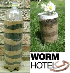 A worm hotel! Great for teaching about plants (how worms help)! Watch as worms create a tunneling system!