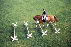 Trotting Over Poles Can Have Exercise, Therapeutic Benefits for Horses…