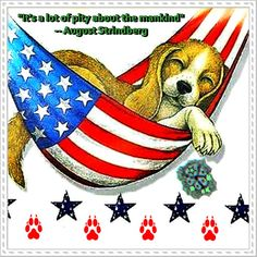 HAPPY 4th of july! Happy 4 Of July, 4th Of July, Denmark, Rooster, Germany, Country, Animals, Animales, Independence Day