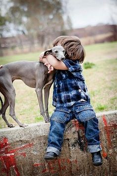 Reminds me of our grandson and his dog, an Italian Greyhound named, Riley! Love Dogs, Dogs And Kids, Animals For Kids, Animals And Pets, Puppy Love, Baby Animals, Dogs And Puppies, Cute Animals, Italian Greyhound