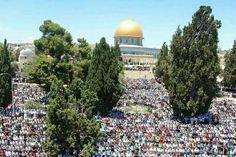 First #jummah (friday) #prayer of #Ramadan at #Al-aqsa, #Jerusalem, #Palestine.   #domeoftherock #alaqsa #westbank #endtheoccupation #beheard #wakeup #TruthOverMedia #GazaOverMedia #freepalestine #freegaza