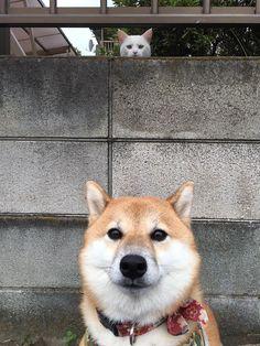 It's behind me isn't it???