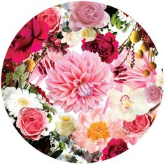 Flowers in Hand by Oh Babushka, via Behance