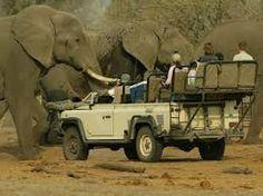 Botswana | Insolit v
