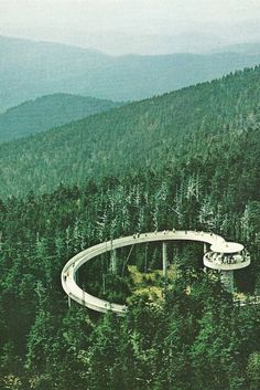 Observation on Clingman's Dome in North Carolina  National Geographic | May 1970