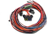 """AEM EMS-4 96"""" Wiring Harness with Fuse & Relay Panel - 30-2905-96 - Phoenix Tuning"""