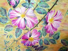 Sweet briar Art silk scarf hand painted by WhisperOfSilk on Etsy