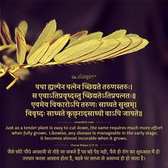 Sanskrit Shloks: Sanskrit Quotes, Thoughts & Slokas with Meaning in Hindi You are in the right place about feng shui basics Here we offer you the most beautiful pictures about the feng shui wealth you Sanskrit Quotes, Sanskrit Mantra, Gita Quotes, Vedic Mantras, Hindu Mantras, Sanskrit Words, Buddhist Quotes, Karma Quotes, Hindi Quotes