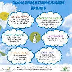10 Natural Air Freshener Hacks For Your Home | Natural Air Freshener, House  Smells And Air Freshener