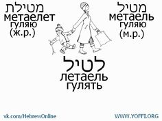 Иврит в иллюстрациях! Учим Иврит Вместе!
