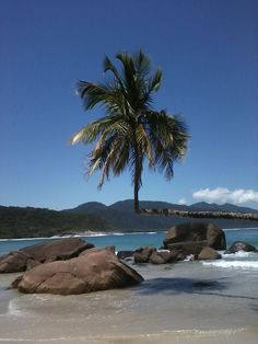 Aventureiro - Ilha Grande RJ