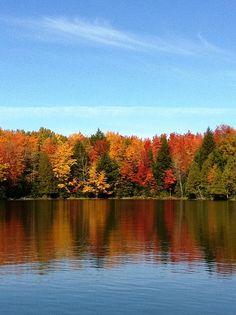 Fall blooms | Thousand Island Lake, Cisco Chain MI | Pure Michigan | Flickr