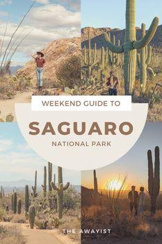 Arizona National Parks, Arizona Trip, Arizona Travel, Usa Travel Guide, Travel Usa, Travel Guides, Places To Travel, Places To See, Travel Destinations
