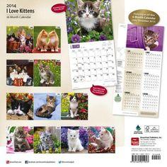 2014 I Love Kittens Wall Calendar, x Chat Web, Cat Calendar, Fiction, Brown Trout, Kittens, Cats, Photo Wall, Love, Calendar