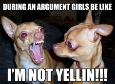 During an argument girls be like I'M NOT YELLING!