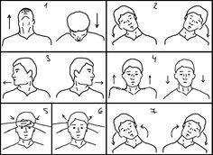 #EjerciciosMusculares para  #Musicos Cuello y hombros: Es la zona es la que más se tensa, incluso por causas ajenas al estudio. Estos estiramientos te ayudarán a relajarla y fortalecerla. Aguanta cada postura 20 segundos. #Relajación
