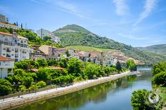 A Douro Valley Wine Tour is a must when visiting this UNESCO World Heritage Site. Here's our favorite way to explore the region + taste incredible wines: Douro Valley, Spain And Portugal, Spain Travel, World Heritage Sites, Trip Planning, Beautiful Places, Around The Worlds, Tours, Wines