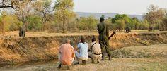 Zebra Plains Camp - A Luxury Safari Camp in the South Luangwa National Park
