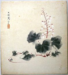Vintage Japanese Painting Saxifrage in Showa Period via VintageFromJapan