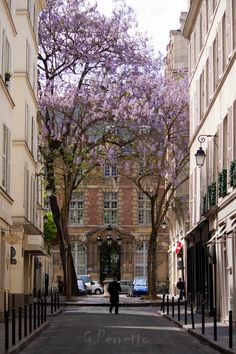 The place de Furstenberg is famous as one of the most charming squares in Paris.