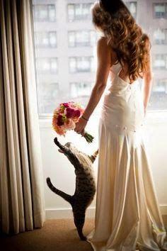 Tanrım Evleniyorum!: Düğününüzde Evcil Hayvanınız Olursa Ne Düşünür? // Pets in Wedding Ceremonies
