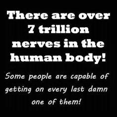 7 trillion nerves