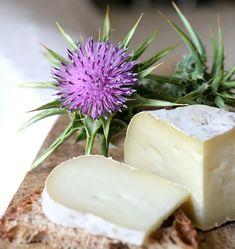 Types Of Cheese, Romanian Food, Yogurt, Cheese Platters, Sauvignon Blanc, How To Make Cheese, Diy Kitchen, Mozzarella, Feta