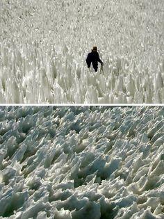 10 Most Fascinating Natural Phenomena (amazing nature, natural scences, amazing nature pictures) - ODDEE