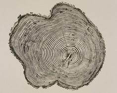 Tree print by Bryan Nash Gill