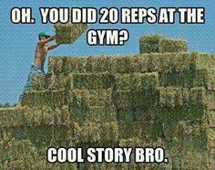 Bailing hay: that can be your workout for the week!