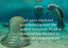 """God gave mankind guardianship over the animal kingdom. Most of mankind has decided to ignore this responsibility. ~Anthony Douglas Williams"""""""