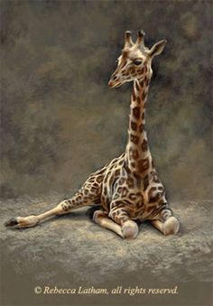 Rebecca Latham's new giraffe miniature commission. Commissioned wildlife paintings and nature paintings in progress by wildlife artist/painter Rebecca Latham. Commissioned wildlife art, nature art, and miniature paintings. Wildlife Paintings, Nature Paintings, Wildlife Art, Art Nature, Beautiful Paintings, Giraffe Painting, Giraffe Art, Animals And Pets, Baby Animals