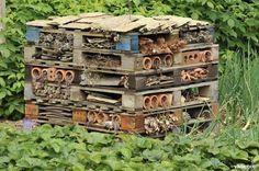hoe insectenhotel bouwen - Google zoeken