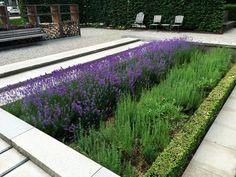 Galería de Novartis Physic Garden / Thorbjörn Andersson + Sweco architects - 5