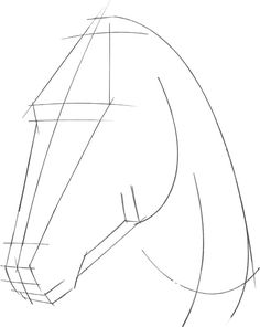 HORSE 1 For this horse portrait, I first establish the structure and angle of the head and neck with long strokes. I mark several planes with horizontal strokes, setting … - Selection from Drawing: Pets [Book] Horse Drawings, Cool Art Drawings, Pencil Art Drawings, Art Drawings Sketches, Animal Drawings, Easy Drawings, Drawing Skills, Drawing Techniques, Book Drawing