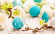 Indir duvar kağıdı Paskalya, Söğüt Dalı, beyaz lale, boyalı yumurta, 1 Nisan Paskalya, bahar