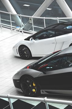 Aventador and Special Edition Gallardo