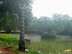Stone pillar by a pond opposite to Chaulikeri temple, in #Barkur, near #Udupi and #Kundapur, in #Karnataka, #India