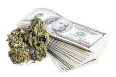 marijuana and money 420 hbtv hemp beach tv h