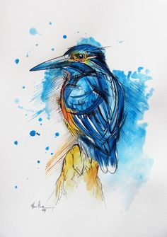 Inked King Fisher by fiona-clarke.com
