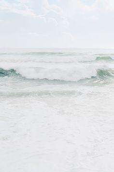 Ogni anno si ritrovavano in quel mare, il loro amore cresceva guardandoli diventare grandi.