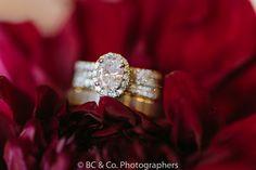 Vellano Country Club   Wedding Photography   Ring Shots   Wedding Photo Ideas   Brianna Caster & Co. Photographers   Shy Heart Studios